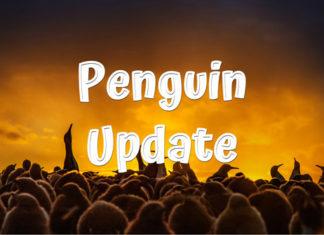 Penguin Update from google in 2012