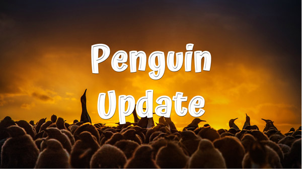 Google's Penguin Update