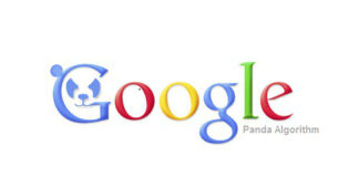 Panda Update Google & Query Encryption