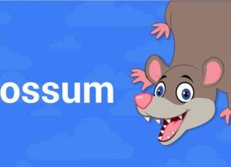 Possum Update by Google in year 2016