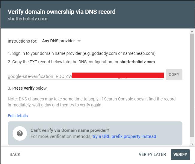 DNS verification in Google search console
