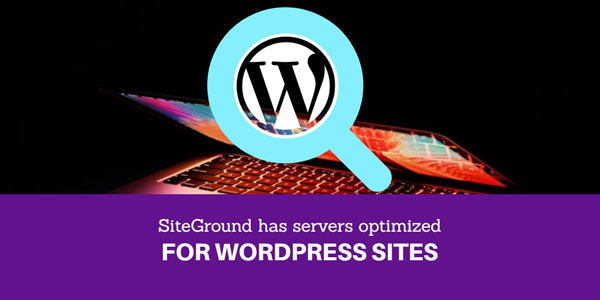 Their Hosting for WordPress is amazing. They have servers optimized for WordPress