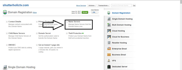 Screen from where you can manage your domain name
