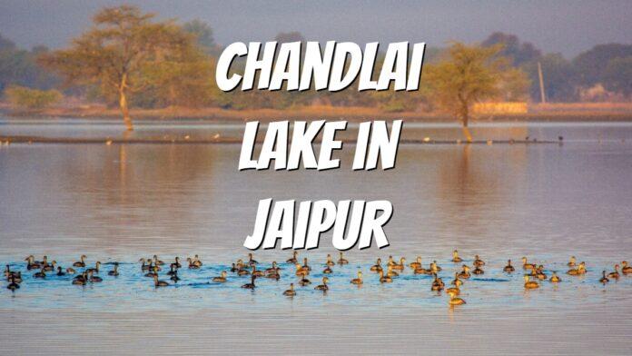Chandlai Lake in Jaipur near shivdaspura