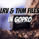 THM and LRV files in a GoPro
