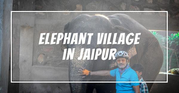 Hathi Gaon in Jaipur